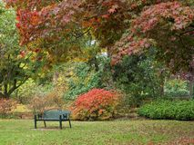 Bench in the fall park Royalty Free Stock Image