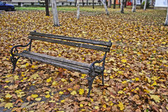 Bench in fallen leaves Royalty Free Stock Images