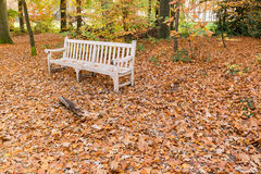 Bench with fallen leaves Royalty Free Stock Photos
