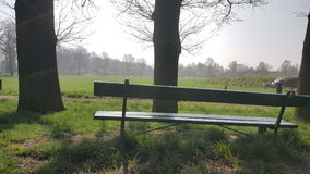 Bench in a Field Royalty Free Stock Photo