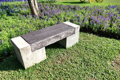 Bench in flower garden. Sunny day Stock Photos