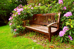 A bench with flowers. In springtime Stock Image