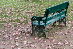 Bench with flowers Stock Photo
