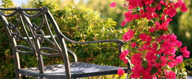 Bench and flowers. A peaceful bench among flowers Royalty Free Stock Photo