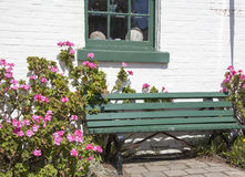The Bench Among Flowers Stock Image