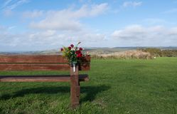 Bench with flowers in nature royalty free stock photos