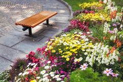 Bench and flowers in the park stock images
