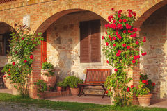Bench among the flowers in the Tuscan agritourism. royalty free stock photos