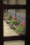 Bench and flowers from wooden window frame Royalty Free Stock Photography
