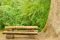 Bench in forest Royalty Free Stock Images