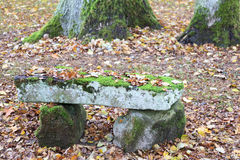 Bench in the forest in autumn. In France Stock Image