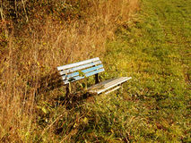 Bench at the forest edge (2) Stock Image