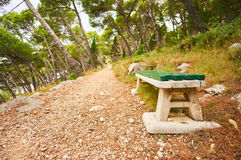 Bench in forest. Royalty Free Stock Images