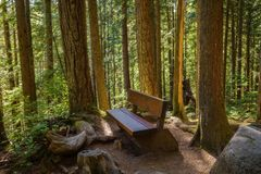 Lynn Canyon park in Vancouver Royalty Free Stock Photography