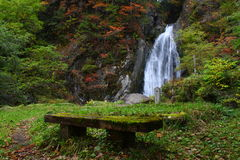 Bench in front of falls Stock Photography