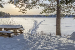 Bench in front of Frozen Lake with Ski Tracks Stock Image