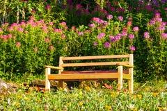 Bench garden Royalty Free Stock Photography