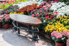 Bench in garden Royalty Free Stock Images