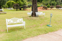 Bench in  garden background Royalty Free Stock Image
