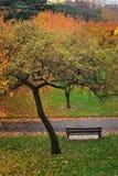 Bench On Garden Path stock image