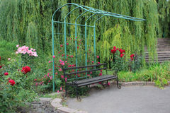 Bench in the garden Stock Photos