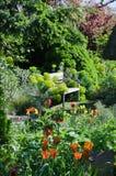 Bench in garden Stock Photos