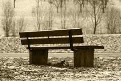 Bench in a German landscape. Sepia-colored bank royalty free stock photo