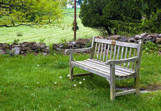 Bench in Grass Area Royalty Free Stock Photography