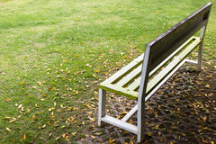Bench on grass with dry leaves. Stock Images
