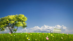 Bench on a grass field Royalty Free Stock Image