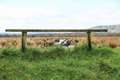 Bench on a grass and lake landscape. In Ireland stock photography