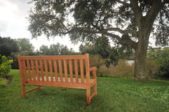 Bench on grass by a tree Royalty Free Stock Photo