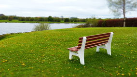 Bench on a green field. And river at the background Royalty Free Stock Photos