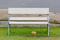 Bench with green grass Royalty Free Stock Image