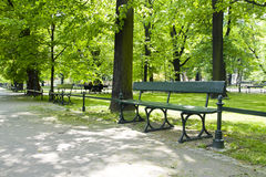 Bench in green park Stock Images
