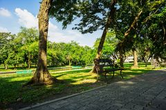 Bench in the green public park at Bangkok, Thailand. Photography in blue sky day, greenness grass and road block foreground. With tall trees, canal and forest Royalty Free Stock Photo