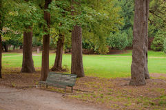 Bench in green. Bench surrounded by greenery in a spring day Stock Photo