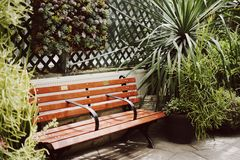 Bench. Greenhouse flowers lifestyle mississauga Stock Photography
