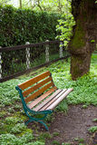 Bench in the grove Royalty Free Stock Photo