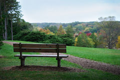 Bench on hill overlooking fall colorful trees at the Morton Arboretum. Stock Photos