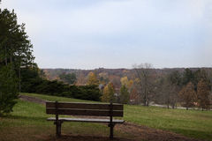 Bench on a hill overlooking fall trees. Royalty Free Stock Photo