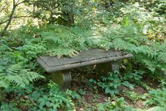 Bench in Houghton`s Garden. Houghton`s Garden is part of conservation land in Newton, Mass. The bench is in a quiet place allowing for contemplation Stock Image