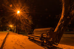 Bench on the illuminated winter park alley at night Royalty Free Stock Photos