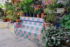 Bench im Garten Stockbild