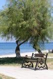 Bench im Park nahe bei dem Meer und dem Strand stockbilder