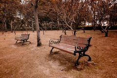 Bench In City Park In The Autumn Royalty Free Stock Photography