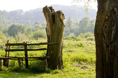 Bench In Countryside Stock Image