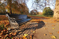 Bench In The Park Stock Photography
