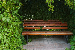 Free Bench In The Park Royalty Free Stock Image - 57732226