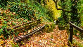 Bench Ioannina Thoegefiro Epirus. Greece natural bridge in green nature Royalty Free Stock Images